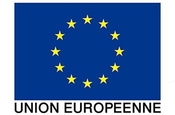 """Résultat de recherche d'images pour """"logo union européenne"""""""